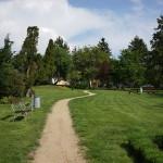 sony-fe-35-green-landscape